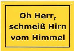 schmeiss-hirn-vom-himmel