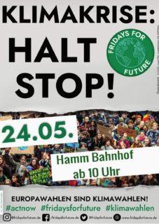Plakat Globaler Klimastreik 24.05.2019